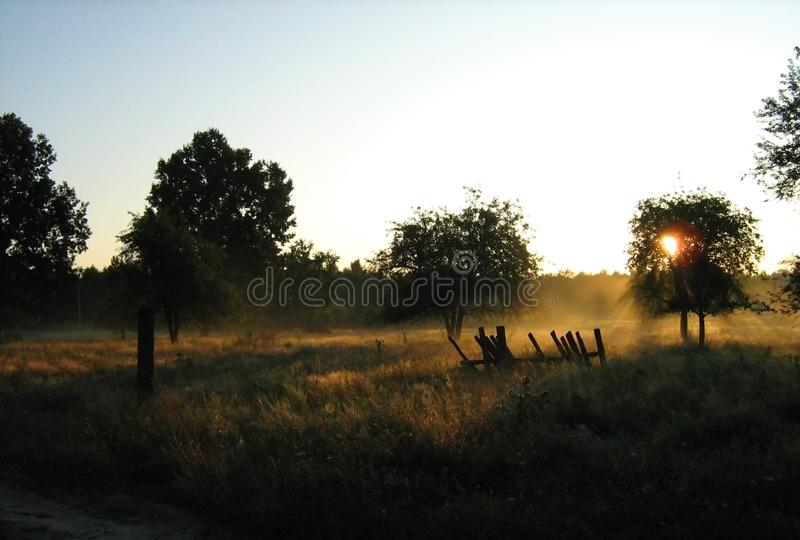 Download Dawn in the village stock image. Image of fence, trees - 20123745