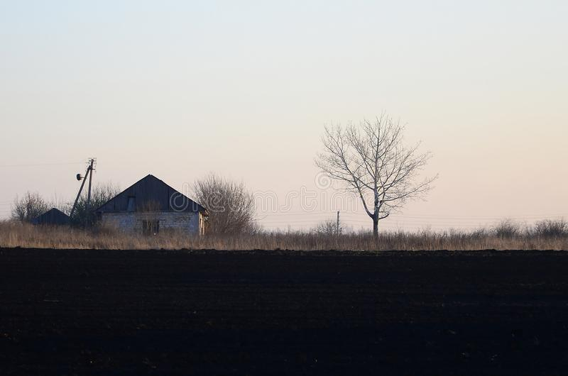 Dawn in the village. A minimalistic photo with a horizon line on. Which there is an apartment house and a tree stock photos