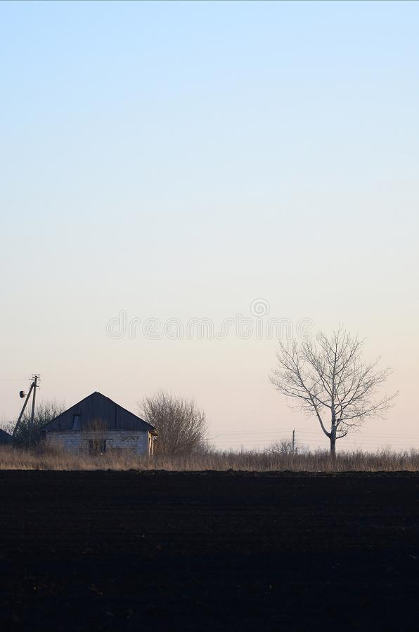 Dawn in the village. A minimalistic photo with a horizon line on. Which there is an apartment house and a tree stock photography