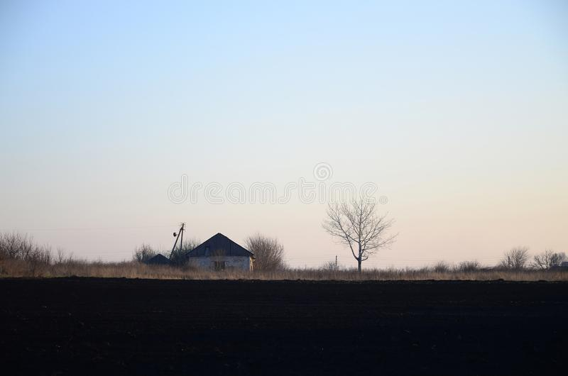 Dawn in the village. A minimalistic photo with a horizon line on. Which there is an apartment house and a tree stock photo