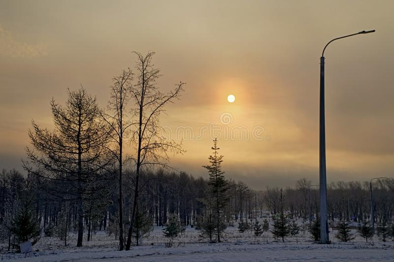 Dawn in the winter city park. Nature and natural phenomena. Early winter morning royalty free stock photography