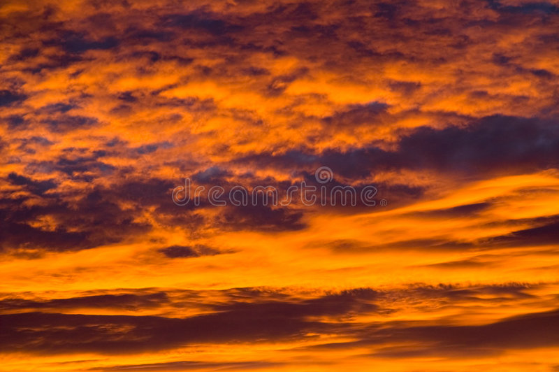 Dawning. Fiery red dawning clouds.With space for copy stock image