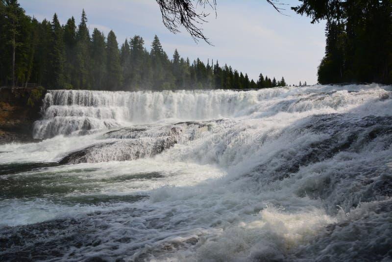 Dawson Falls in Canada. Dawson Falls Well`s Grey provincial park Canada stock image