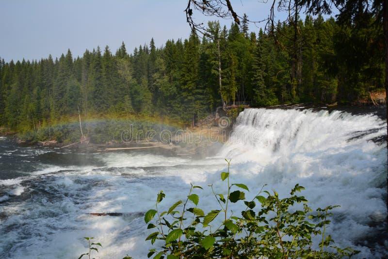 Dawson Falls in Canada. Dawson Falls Well`s Grey provincial park Canada stock photo