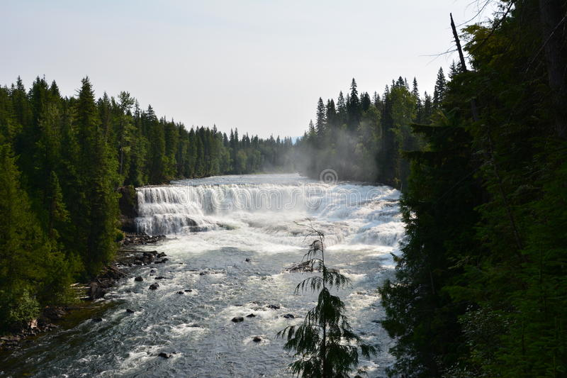 Dawson Falls in Canada. Dawson Falls Well`s Grey provincial park Canada stock photography