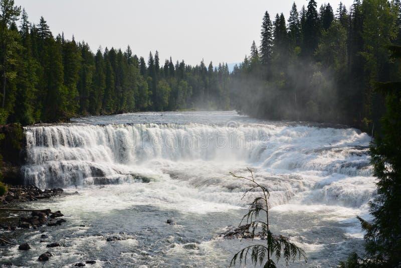 Dawson Falls i Kanada fotografering för bildbyråer