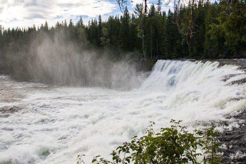 Dawson Falls, Murtle-Rivier, Putten Gray Provincial Park, Brits Colombia, Canada royalty-vrije stock foto