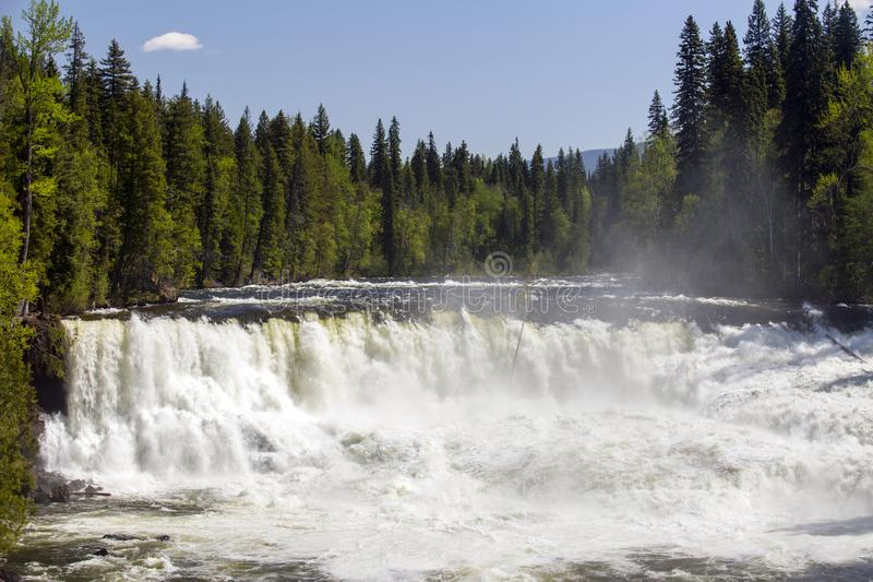 Dawson Falls Wells Gray Provincial Park royalty free stock image
