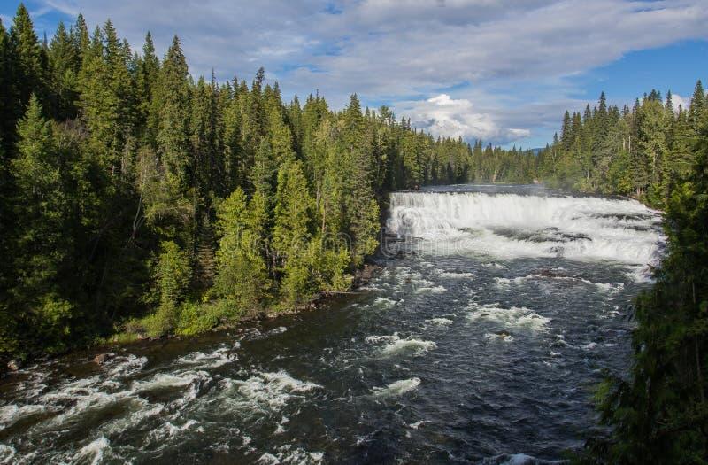 Dawson spadki, Murtle rzeka, studnia prowincjonału Szary park, kolumbiowie brytyjska, Kanada obraz royalty free