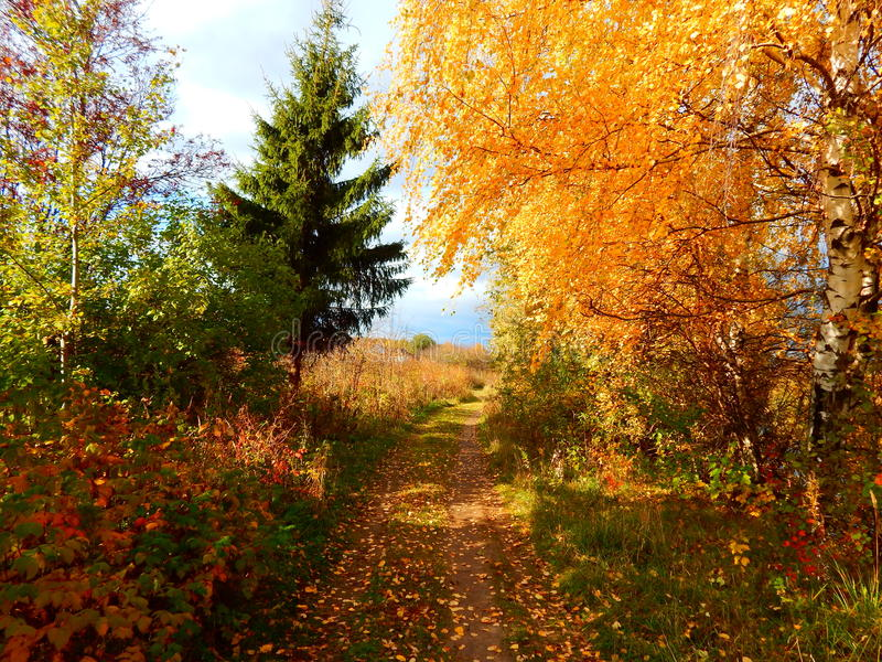 Day of autumn royalty free stock images