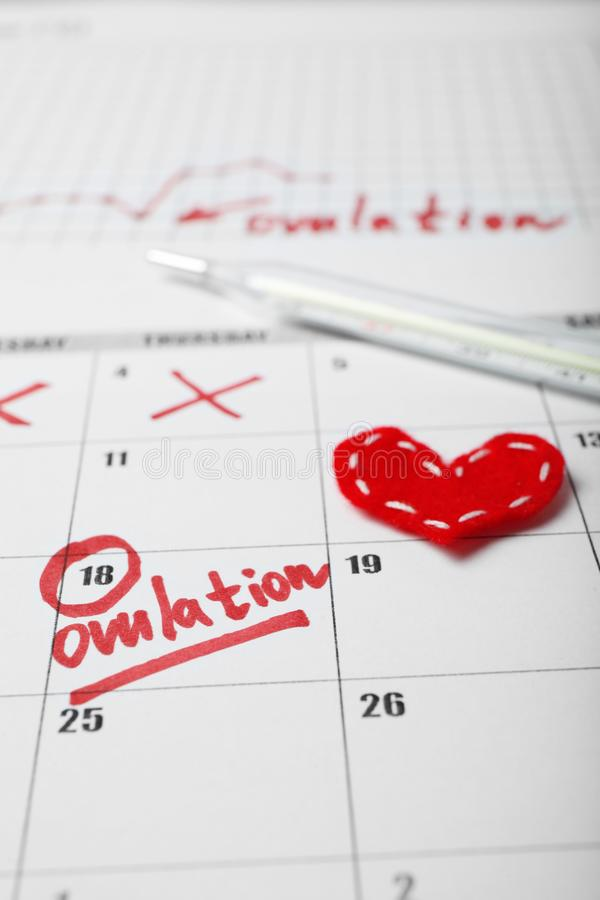 Day of female ovulation in calendar, schedule of basal temperature. Time to conceive child.  royalty free stock photo