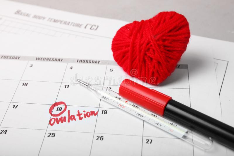 Day of female ovulation in calendar, schedule of basal temperature. Time to conceive child.  stock images