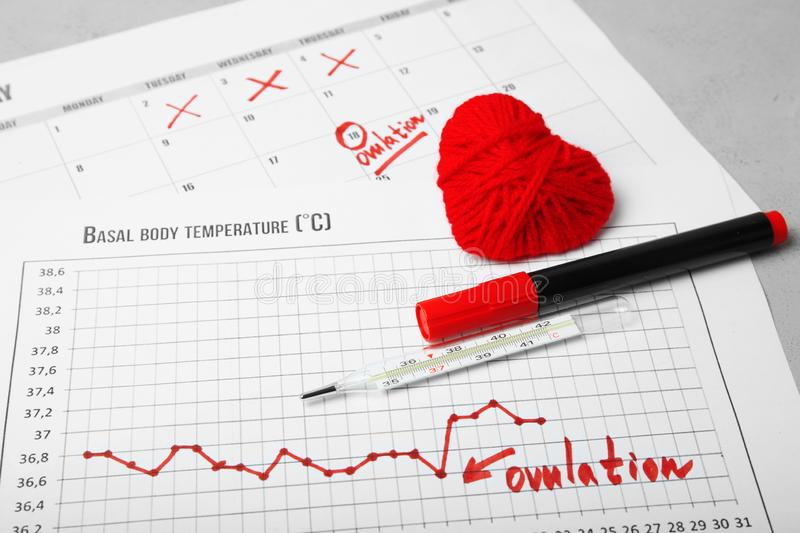 Day of female ovulation in calendar, schedule of basal temperature. Time to conceive child.  stock photos