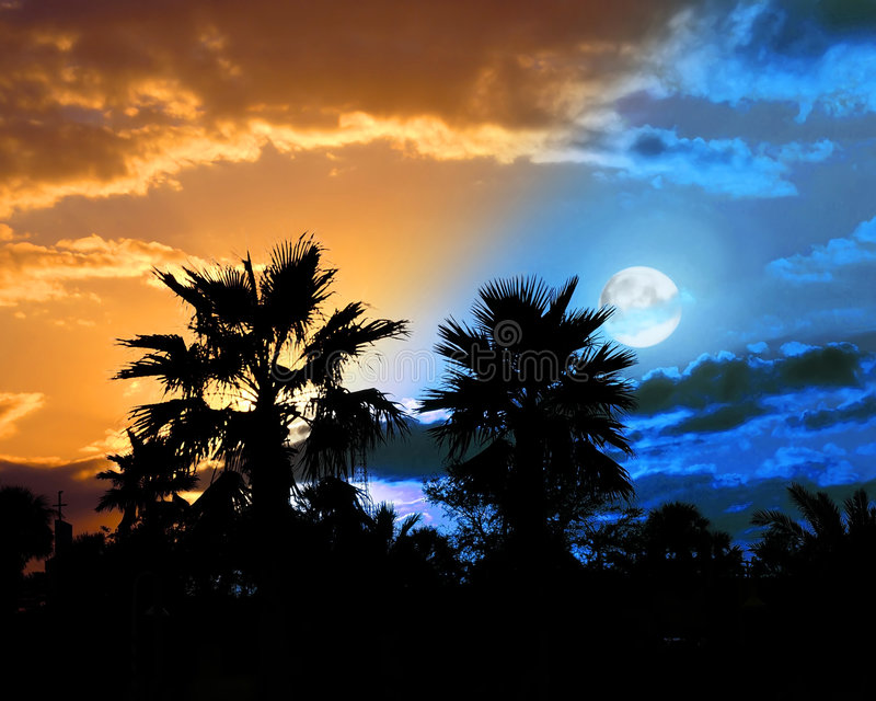 Day/night. A tropical sunset turns swiftly to moonlit night stock illustration
