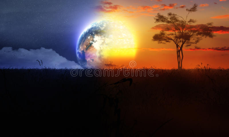 Day And Night With Tree Sun And Moon vector illustration