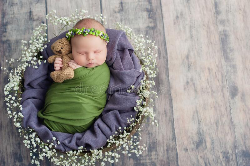 10 day old newborn baby is sleeping in basket. Two week old child. Beginning of life and happy fairy magic childhood concept. copy. Space, asleep, beautiful stock photos