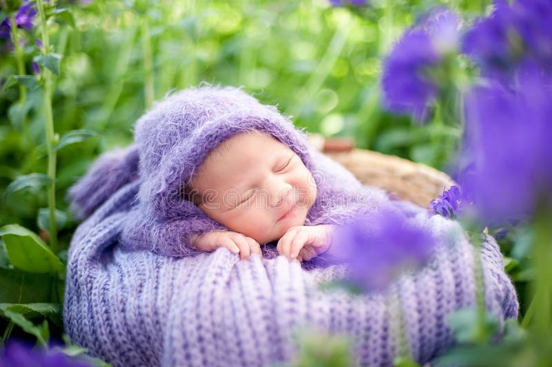 17 day old Smiling newborn baby is sleeping on his stomach in the basket on nature in the garden outdoor royalty free stock photography