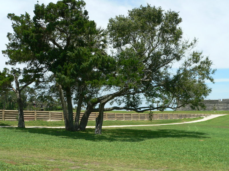 Download Day at the Park stock photo. Image of shade, tree, path - 155980