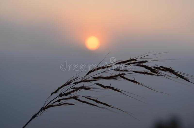 The sun rises in the east royalty free stock photography