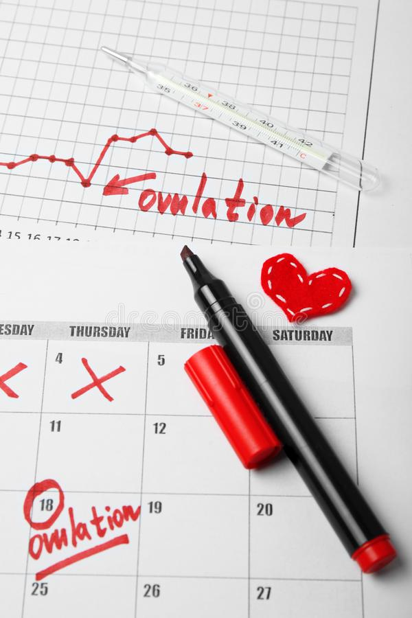 Day to conceive child. Family planning. Ovulation Day in calendar.  stock photography
