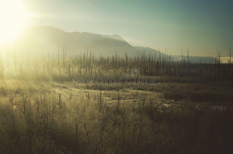 daybreak photographie stock