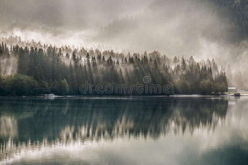 Daylight, Environment, Fog, Foggy, royalty free stock images