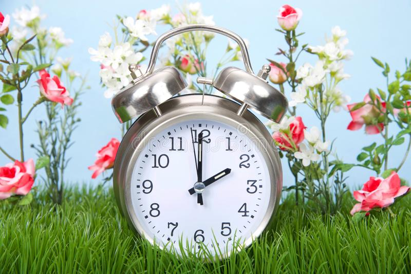 Daylight savings clock in grass with flowers spring forwards. Retro style clock sitting in green grass with flowers representing daylight savings spring forwards stock images