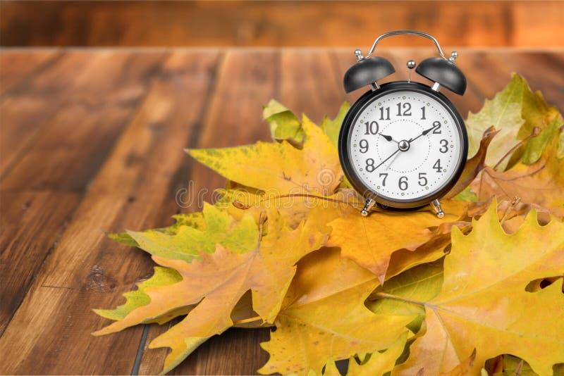 Daylight Savings Time stock images