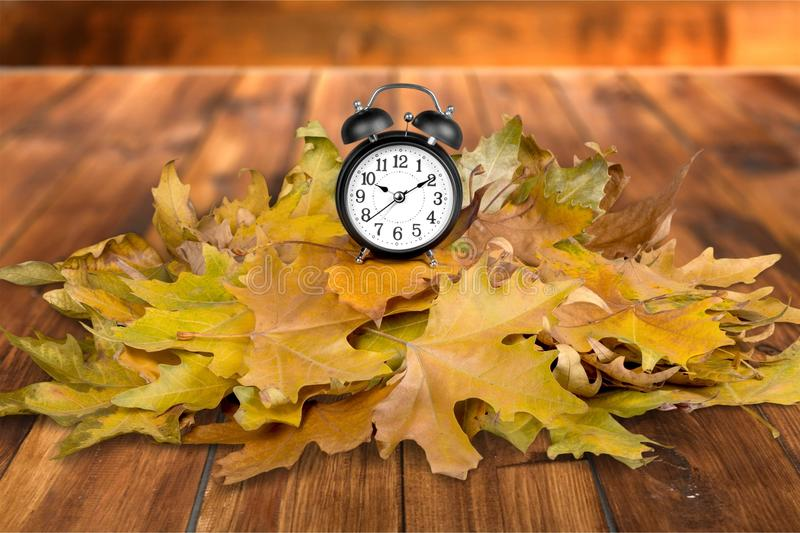 Daylight Savings Time. Autumn Clock Time Leaf Season Spring royalty free stock photography