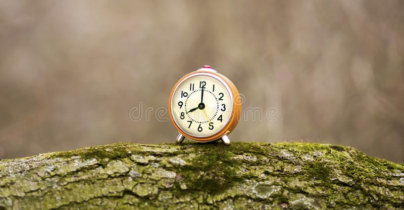Daylight savings time banner, alarm clock standing on a trunk. Daylight savings time - web banner of an alarm clock as standing on a tree trunk stock photography