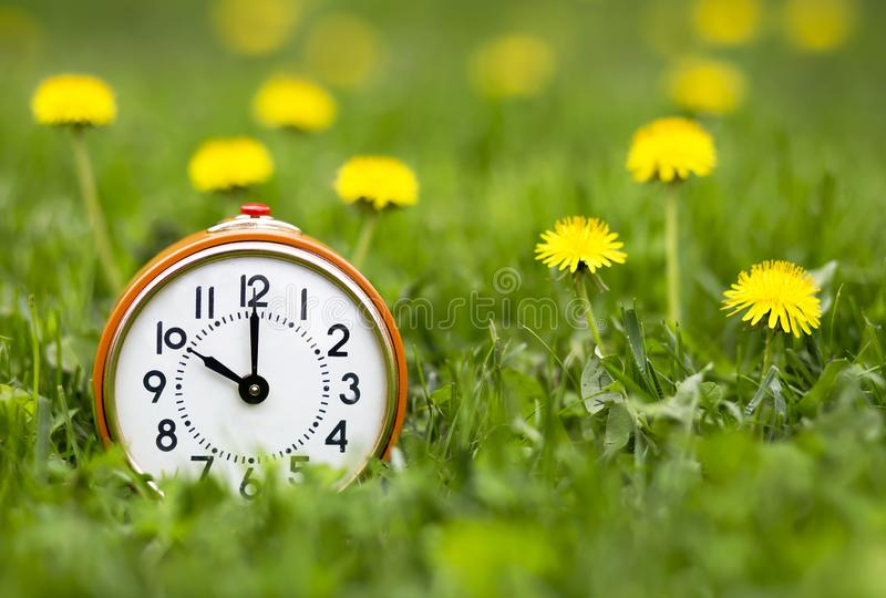 Daylight savings time, spring forward - alarm clock and dandelion flowers. Daylight savings time, spring forward concept - retro alarm clock and dandelion stock images