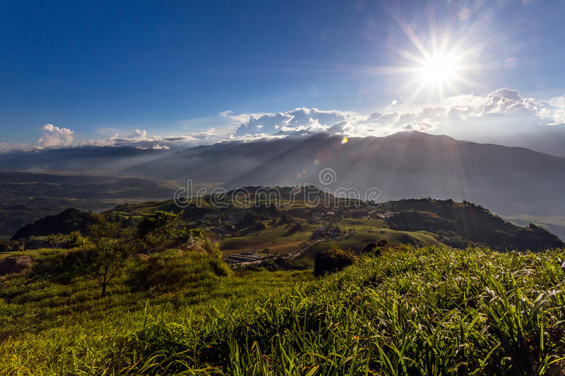 Daylily flowers in Sixty Stone Mtn in Taiwan stock photography