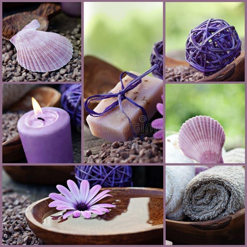 Dayspa violetcollage arkivfoton