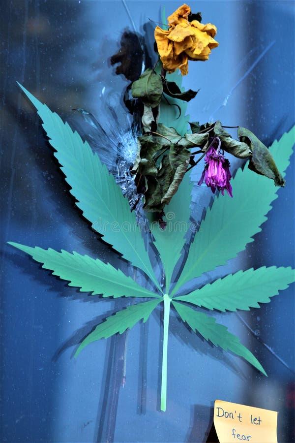 Dayton, Ohio/Estados Unidos - 7 de agosto de 2019: Una etiqueta de la hoja de la marijuana cubre un agujero de bala fotografía de archivo libre de regalías