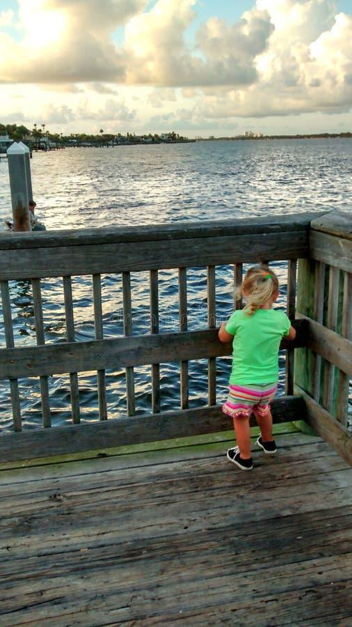 Daytona海湾 免版税图库摄影