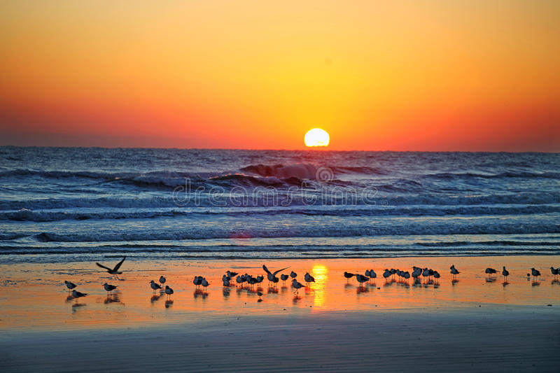 Daytona Beach, Florida, orizzonte di U.S.A. fotografia stock