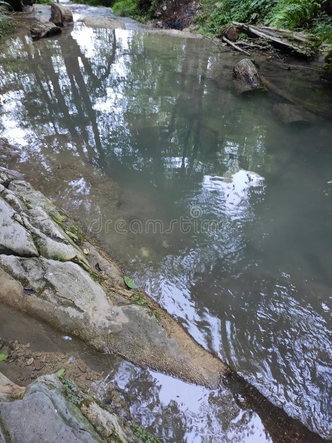 Mountain river in the green forest and trees around. Daywalk near mountain river in the green forest stock photography