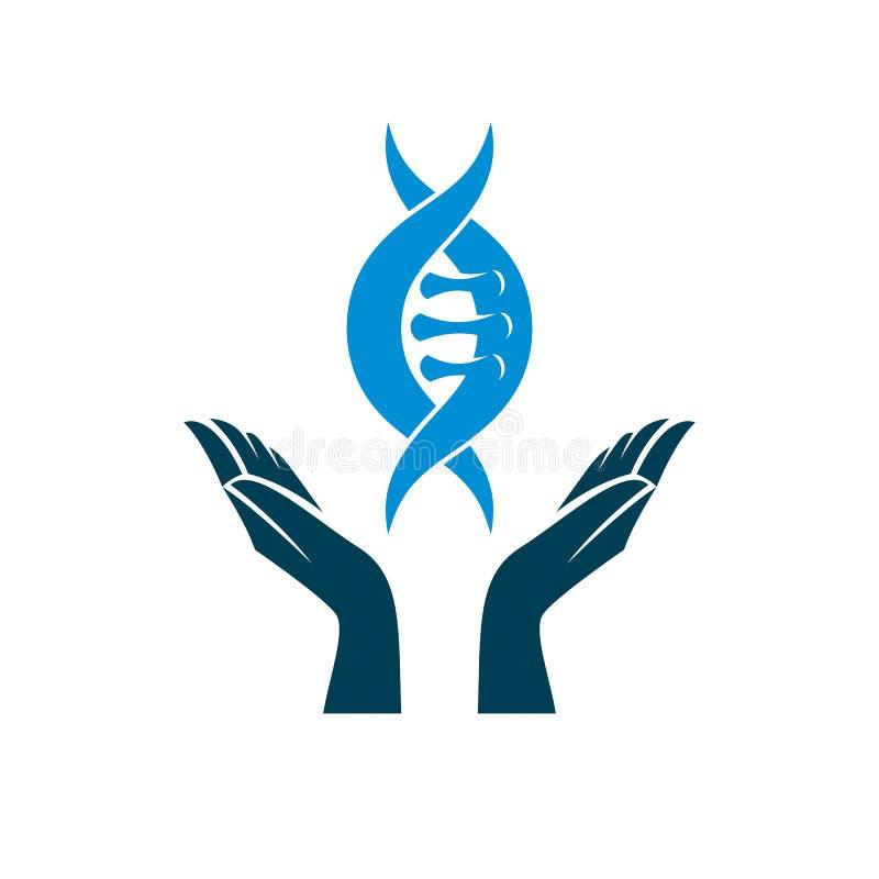 Dbający rękę trzyma modela istoty ludzkiej DNA Bioengineering jako di royalty ilustracja