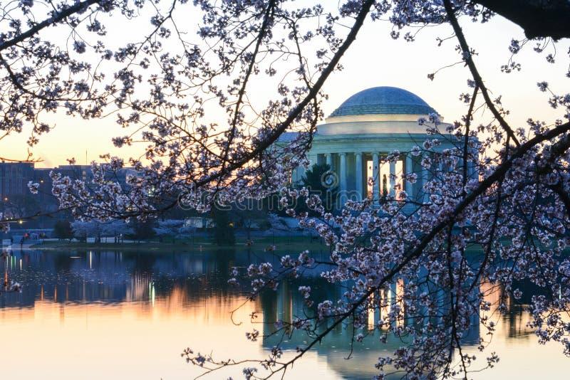dc杰斐逊纪念春天华盛顿 免版税库存照片