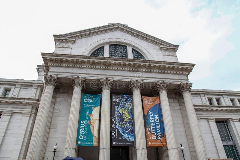 DC ВАШИНГТОНА, USA-JUNE 12,2018: Перед Национальным музеем естественной истории большой музей в DC, США стоковые фото