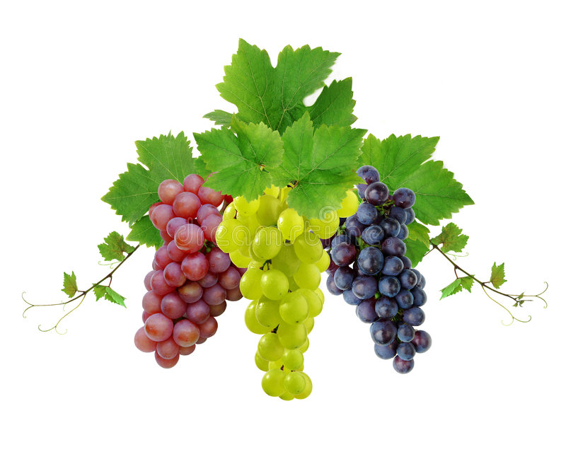 Ddecoration of wine grapes royalty free stock images