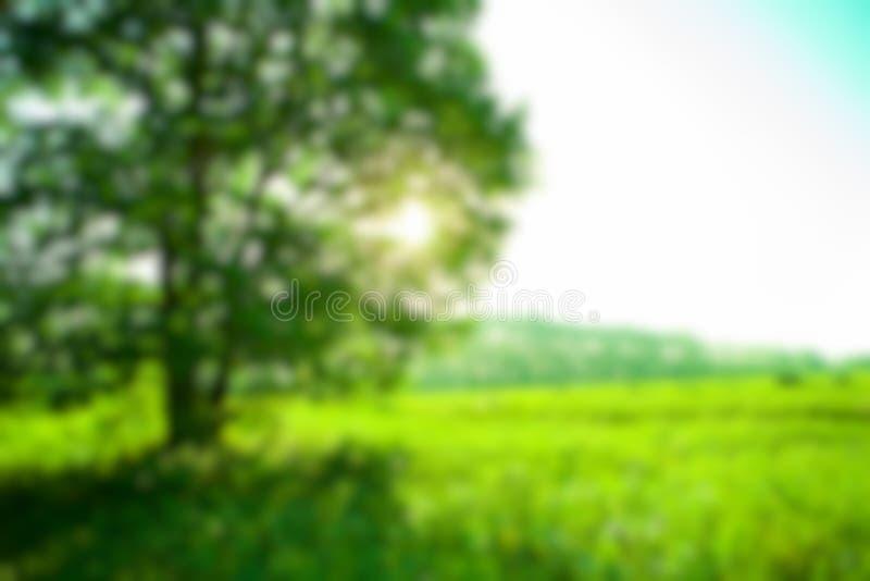 De-στραμμένο υπόβαθρο φύσης στοκ εικόνες