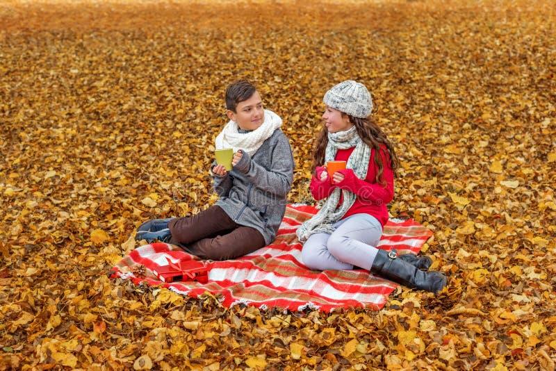 De aanbiddelijke tienerjaren communiceren drinken theebespreking terwijl het zitten in een park op een plaidpicknick royalty-vrije stock afbeelding