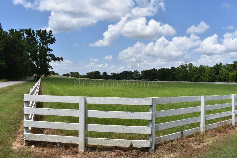 De Aandrijving van het land in Oost-Texas en I gezien dit wonder gebied schermen en hemel royalty-vrije stock afbeelding