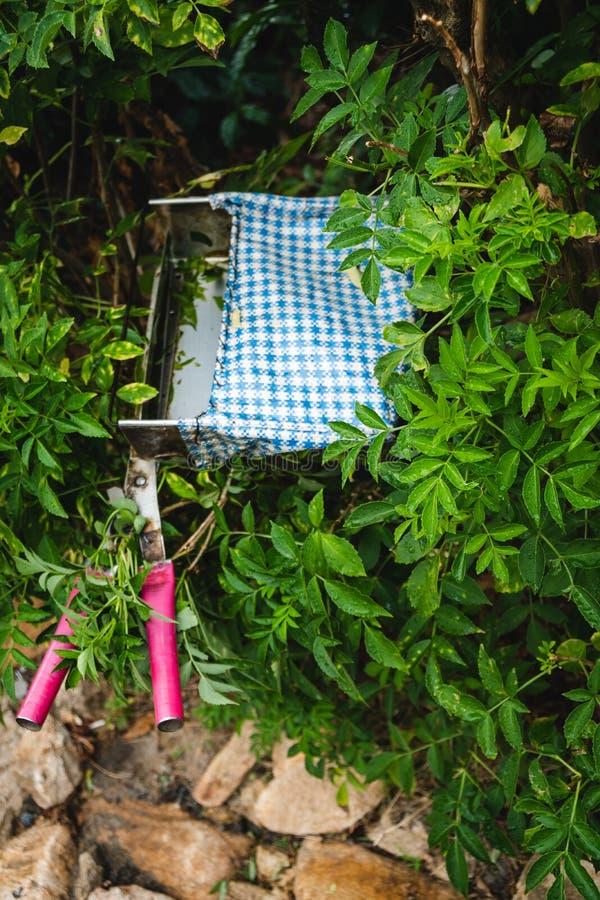 De aanplanting Kerala groen India van de Munnarthee stock foto's