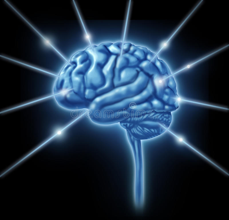 De aanslutingen van hersenen de sectiesdivis van de intelligentiekwab vector illustratie
