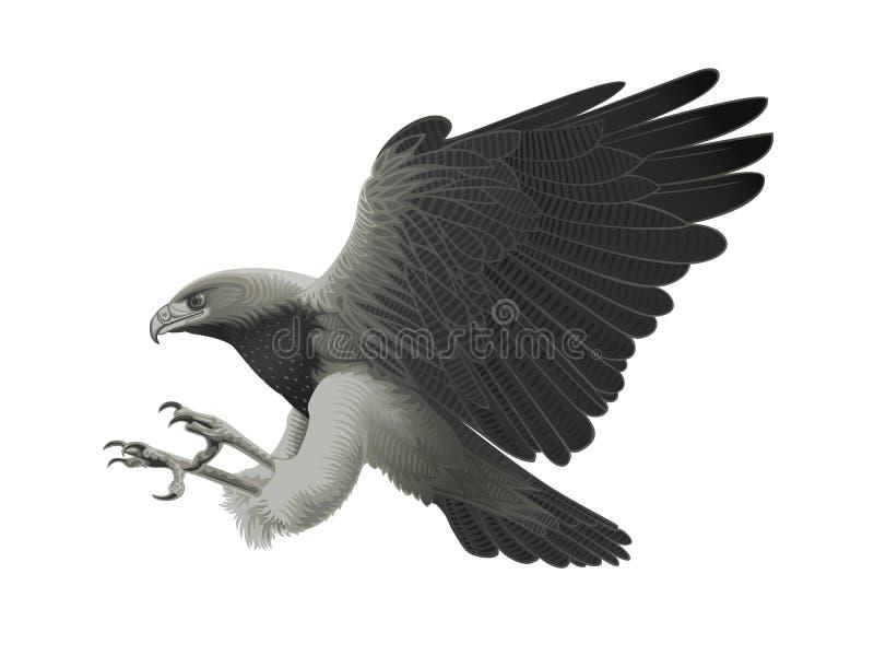 De aanval van de adelaar