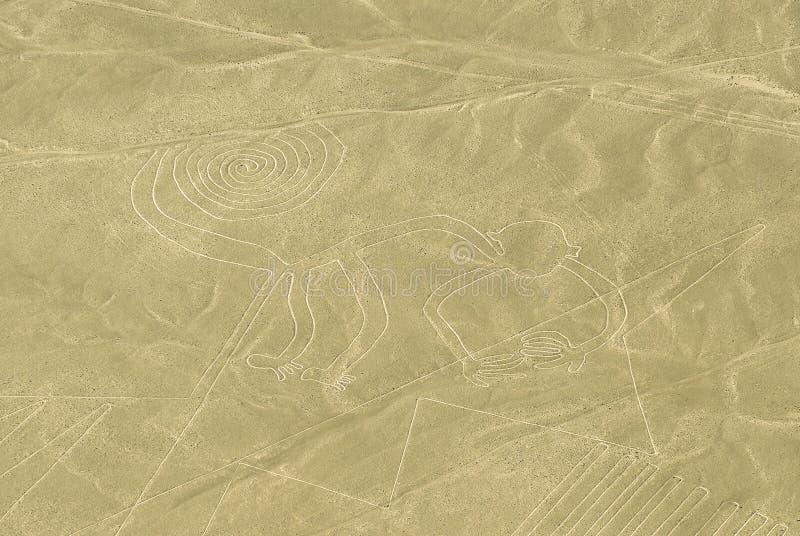 De Aap, Nazca-Lijnen, Peru royalty-vrije stock afbeelding