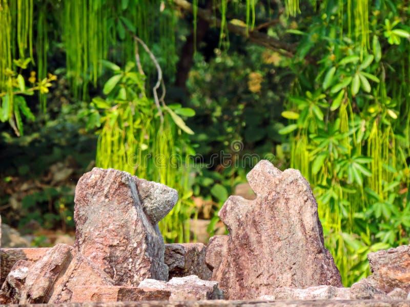 De Aard en de ruïnes van de IIIrdtijd in Zontempel, Konark Odisha stock fotografie