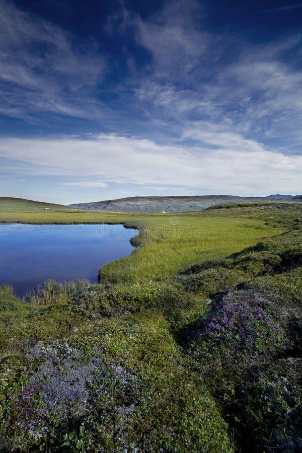 De aard en het landschap van IJsland stock foto's